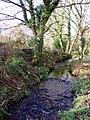 Stream near Georgia bridge - geograph.org.uk - 87667.jpg