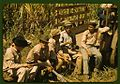 Sugar cane workers resting 1a34016v.jpg