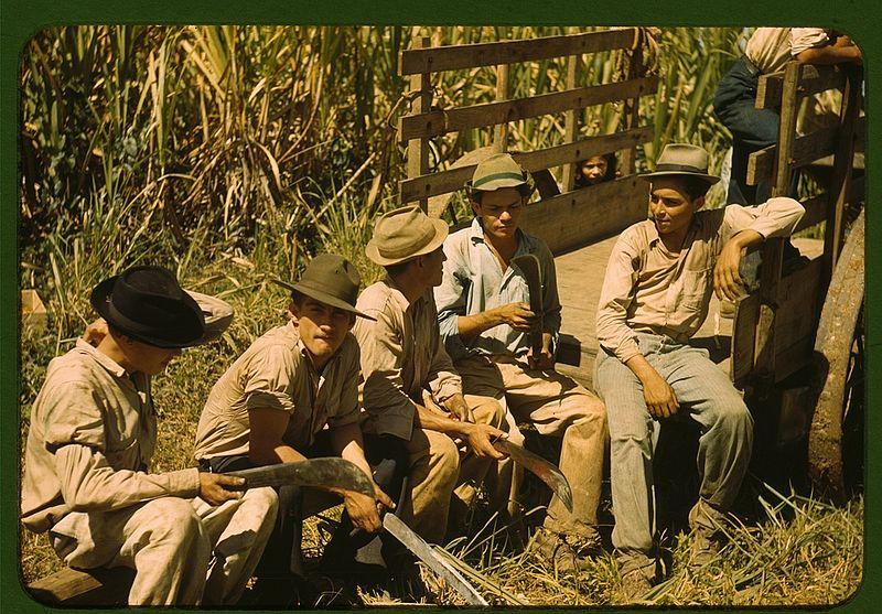 Sugar cane workers resting 1a34016v.jpg