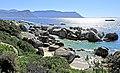 Suráfrica, Simon's Town 17.jpg