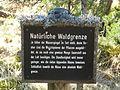 Tafel Hinterzartener Moor 1130121 Natürliche Waldgrenze.jpg