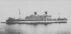 Shipping Control Authority for the Japanese Merchant Marine - Japanese hospital ship Takasago Maru