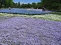 Tatebayashi Yachonomori Garden Bluegarden 1.JPG