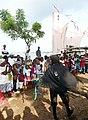 Tchiloli à São Tomé (11).jpg