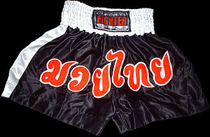 A pair of Muay Thai shorts, note the Thai text that means Muay Thai in English.