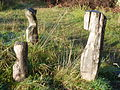 "The ""Man Woman Child"" sculptures by Rachel Ramchurn on the Fallowfield Loop (8200756250).jpg"