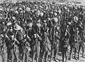 The British Army on the Western Front, 1914-1918. Q537.jpg
