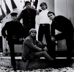 The Electric Prunes nel 1966