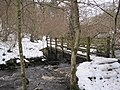 The First Footbridge, Hareshaw Linn Gorge - geograph.org.uk - 1692175.jpg