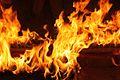 The Hindu Flame 07.jpg