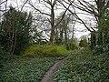 The Lawns, near Spa Hill - geograph.org.uk - 740188.jpg