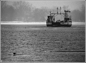 The Ongiara, a vehicle ferry in Toronto -b.jpg