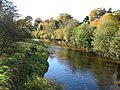 The River Allen - geograph.org.uk - 598387.jpg