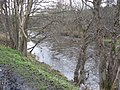 The River Tweed flowing away from Thornielee - geograph.org.uk - 1121683.jpg