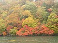 The autamn leaves at the Chuzenjiko lake from the ferry - panoramio.jpg