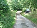 The lane between Cadwell and Upper Kinsham - geograph.org.uk - 44212.jpg
