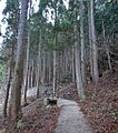 The road to the Monky park , 野猿公苑への道 - panoramio (8).jpg