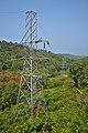 Thenmala Transmission Line.jpg