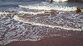 Tignish Shore Beach, Prince Edward Island (471229) (9450737552).jpg
