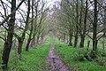 Tittensor Chase - geograph.org.uk - 291312.jpg