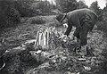 Tjärbränning. Tjärmila täckes med granris - Nordiska museet - NMA.0052057.jpg