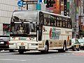 Tokyo Service Enterprise Super Cruiser - FHI 17S Saitama Broncos.jpg