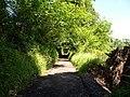 Track to Darren fach - geograph.org.uk - 1357178.jpg