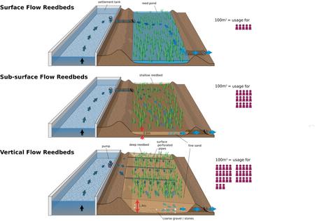 Reedbed Sewage Treatments