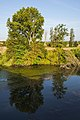 Tree reflection, Orb River, Béziers cf01.jpg