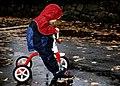 Trike in the Rain.jpg