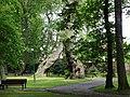 Trzęsacz park, XVIII nr 658124 (8).JPG