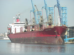 Turkish ship ORHAN DEVAL discharging wheat.jpg