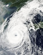 Typhoon Rusa 30 aug 2002 0420Z.jpg