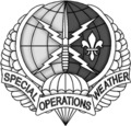Special Operations Weather Team (SOWT) Flash and Crest