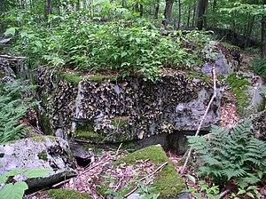 Otter Creek Wilderness - Lichen covered boulder in Otter Creek Wilderness. (The species is Umbilicaria mammulata.)