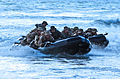 United States Navy SEALs 533.jpg
