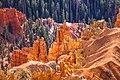 Up over 10,000 feet 0n Utah 148 into Cedar Breaks National Monument - (22393552118).jpg