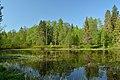 Väike-Tammiku järv.jpg