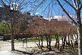 VIEW , ®'s - DiDi - RM - Ð 6K - ┼ MADRID PARQUE DE PEÑUELAS MIRADOR - panoramio (7).jpg