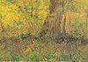 Van Gogh - Unterholz.jpeg