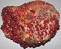 Vanadinite on Jurassic dolostone (Mibladen, Morocco) 6 (23213560474).jpg