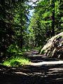 Vatze's road on spring - panoramio.jpg