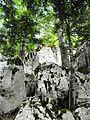 Velebit stijene.jpg