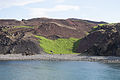 Vestmannaeyjar, vegetation on the tefra.jpg