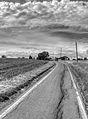 Via Francesca - Albinea (RE) Italy - May 15, 2011 - panoramio (1).jpg