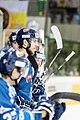 Vienna Capitals vs Fehervar AV19 -123.jpg