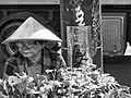 Viet merchant Toronto May 2012.jpg