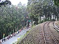 View near Fenqihu.jpg