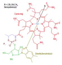 המבנה הכימי של סדרת תרכובות המכונה ויטמין B12. האות R בתרשים מסמנת את הקשר השישי של יון הקובלט, במקרה של הידרוקסיקובלמין, האות R מסמנת הידרוקסיל (OH).