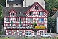 Wädenswil - Zürichsee IMG 8383.JPG